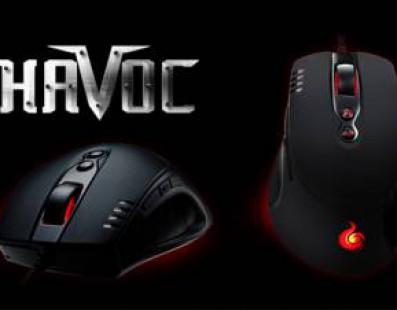 El ratón Havoc llega para quedarse