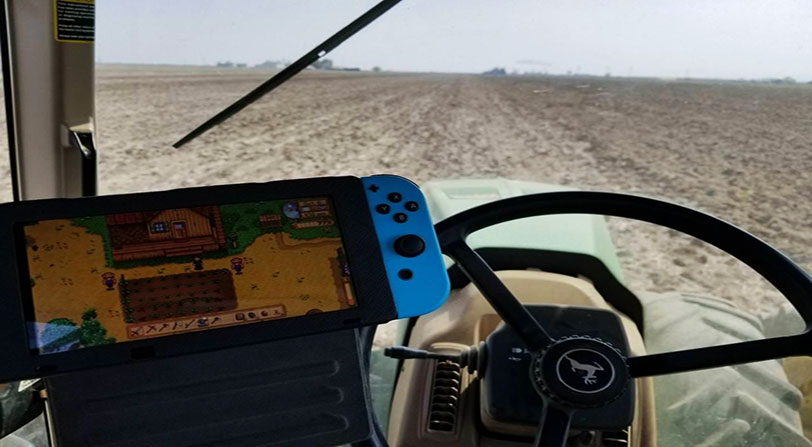 granjero juega stardew valley desconectar