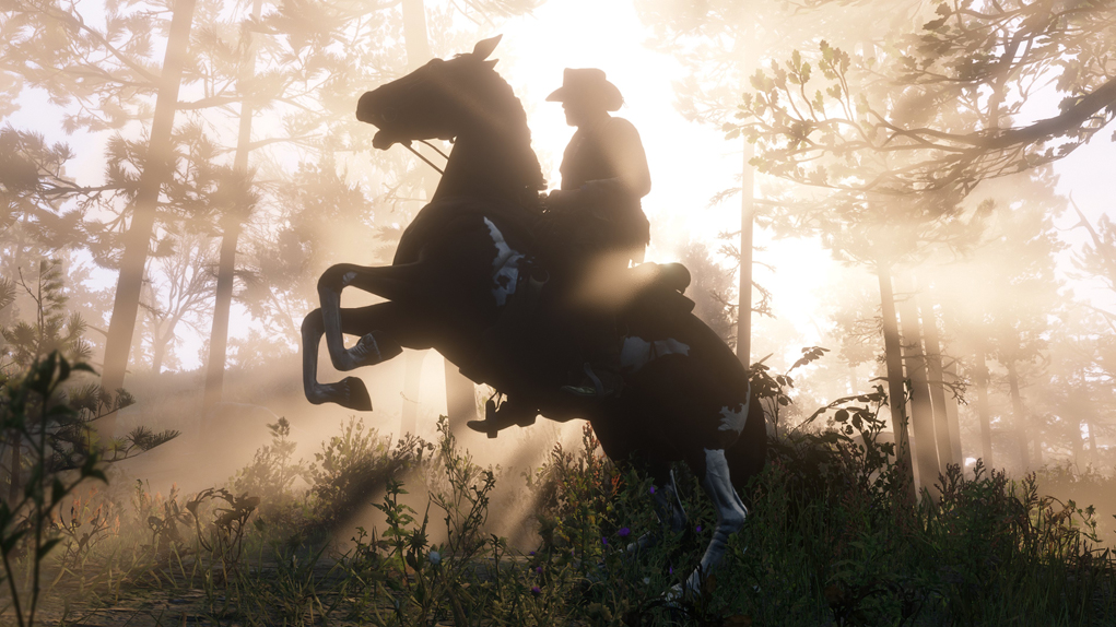 red dead redemption 2 100 gb